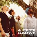 """A Tree Grows, """"A Tree Grows"""": la recensione"""