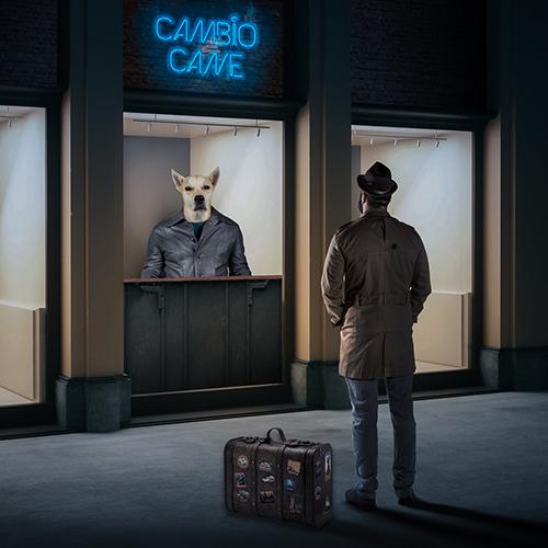 """Cambio Cane, """"Due"""": recensione e streaming"""