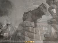"Lameba: ""A wonderful becoming"" è il nuovo singolo"