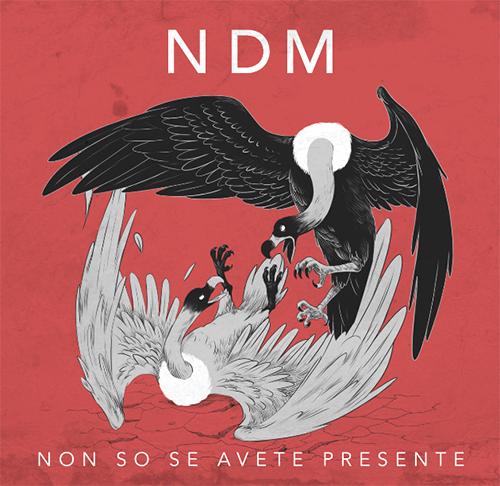 """NDM, """"Non so se avete presente"""": la recensione"""