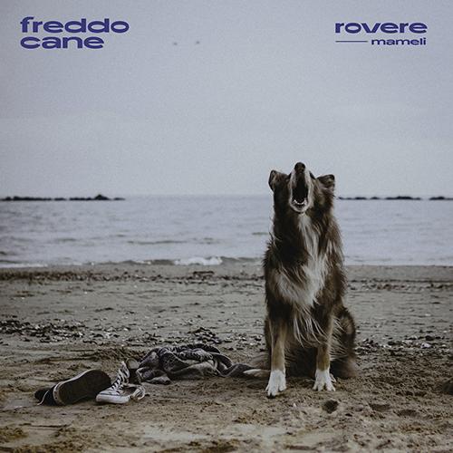 """rovere feat. mameli: """"freddo cane"""" è il nuovo singolo"""